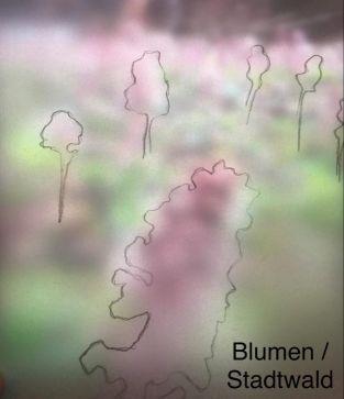Anna Stadler _ Blumen _ Stadtwald
