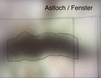 Anna Stadler_Astloch Fenster